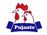 Hijos de Juan Pujante